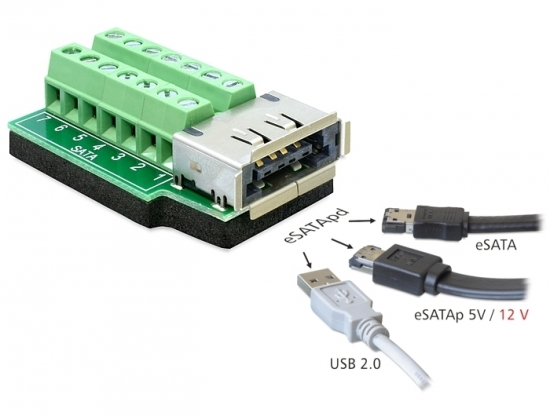 Adapter eSATApd Buchse - Terminalblock 14 Pin